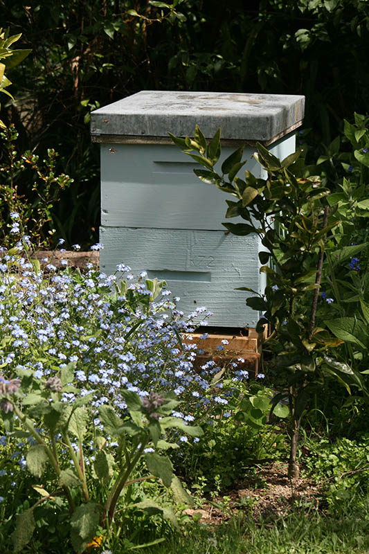 bee hive lease marlborough